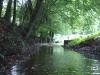 Rzeka Wda